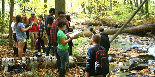 Students conduct NR 1 field lab at Potash Brook