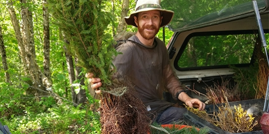 PhD student holds tree seedlings to plant