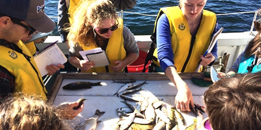 Students on Melosira with fish