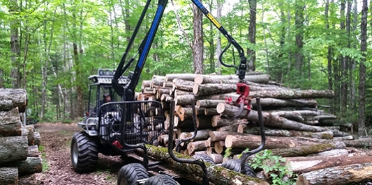 Logger piles up logs with front loader