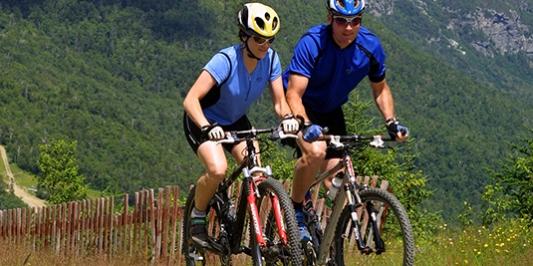 Two mountain bikers on a mountain trail