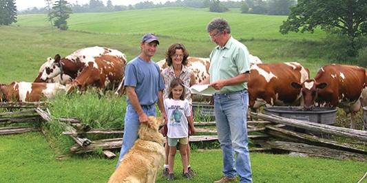 Family, dog, cows, farm field