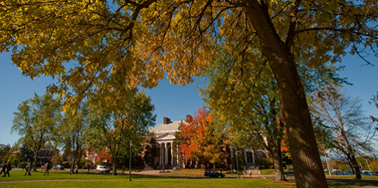 waterman building in the fall
