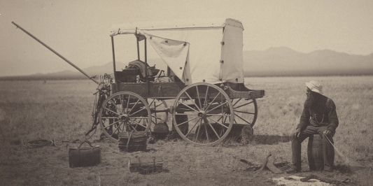Pringle sitting next to his wagon in the desert, surrounded by plant-collecting equipment