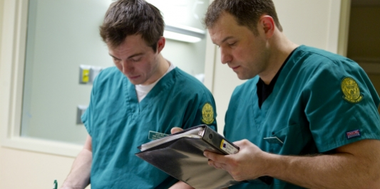 Students in the clinical simulation laboratory
