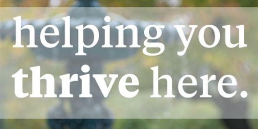 an image with a green background has in all white text the words, helping you thrive here