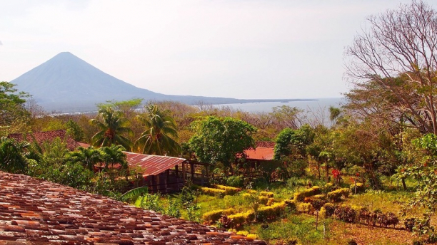 Nicaraguan coffee farm with volcano in background