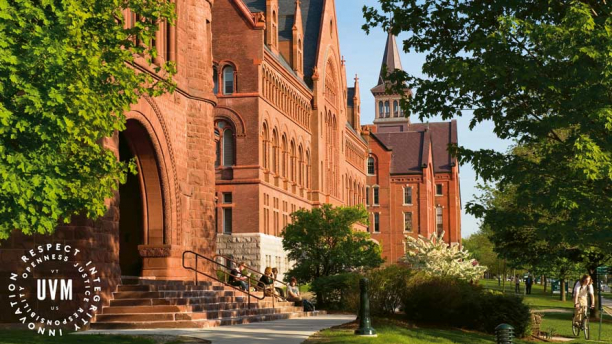 Statement on diversity and inclusion at the Gund Institute