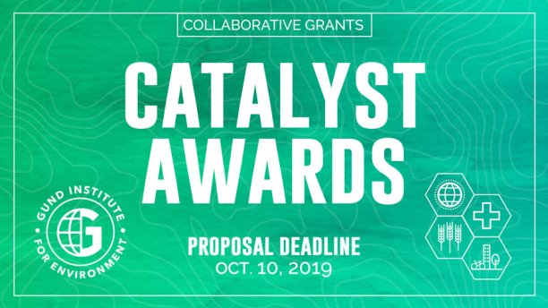 Gund Catalyst Awards | Gund Institute for Environment | The
