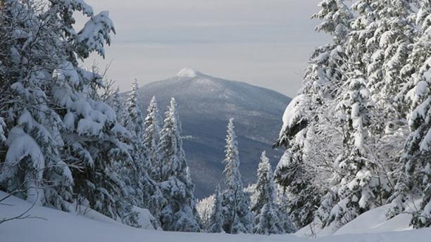 Snowy Green Mountain