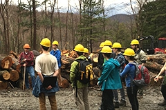 Forest management class at a log landing