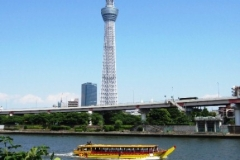 View of the Tokyo Sky Tree