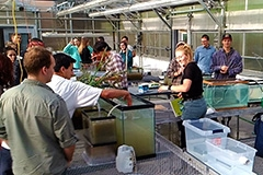 Students working with terrariums in greenhouse