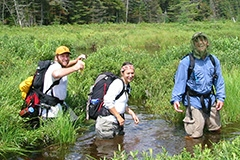 Students wading in swamp