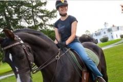 Moragn horse