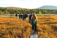NR 1 students on boardwalk of bog