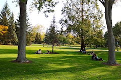 Students studying on UVM Green