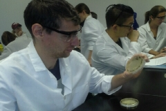 NFS 203 Lab