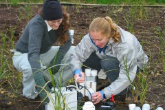 Researchers sampling soils