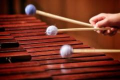 Close up of a marimba being played