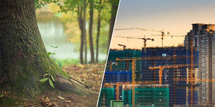 A composite image of nature pressured by urban development