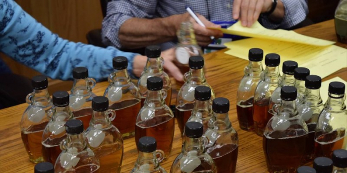 maple syrup testing