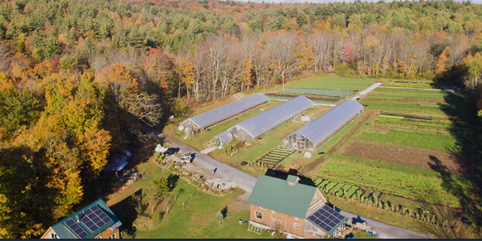image description: aerial view of a farm with solar panels, plots with different crops, greenhouses, and surrounded by trees in autumn foliage colors