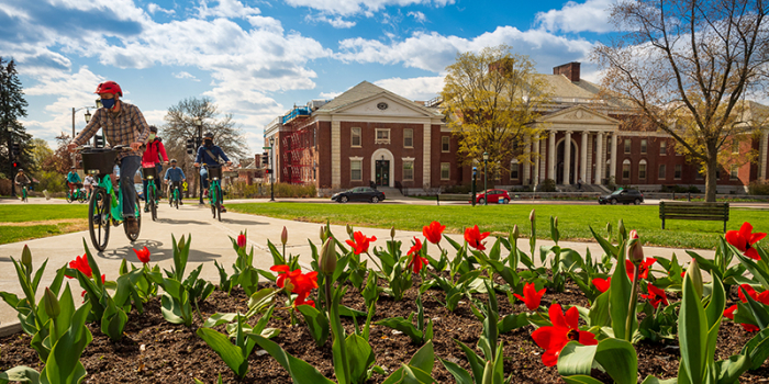 students riding bicycles in front of waterman with red tulips in bloom