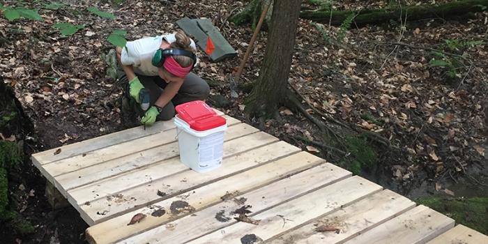 Intern builds wooden bridge on woods trail