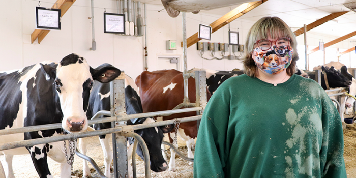 student standing in dairy barn with cows
