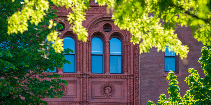 Red brick windows on Williams Hall behind green tree branches