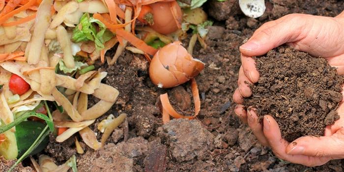 Composting vegetable scraps