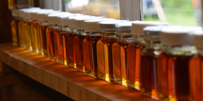 Small glass bottles of maple syrup lined up in window with sun shining through
