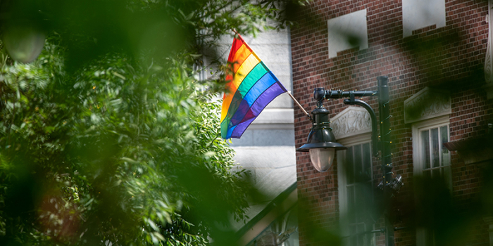 Rainbow Pride flag flies on Church Street behind leafy tree
