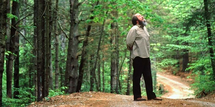Solzhenitsyn stands on a dirt road in a forest, looking up