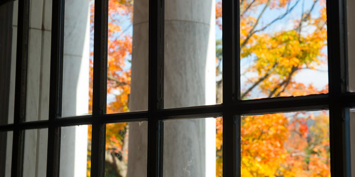 view of fall leaves through window in waterman building