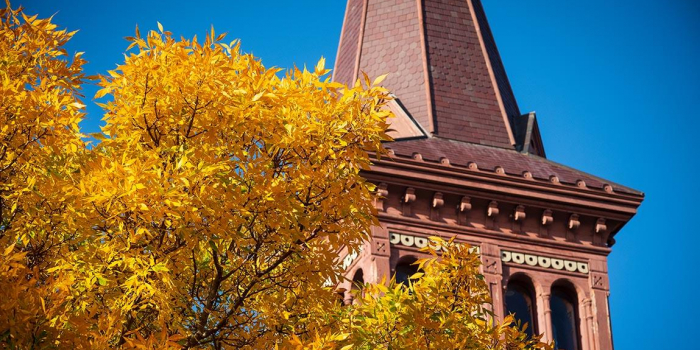 fall leaves against blue sky and building tower