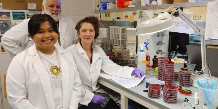 John Barlow, Caitlin Jeffrey and Graecia Pacheco in the Barlow Lab.