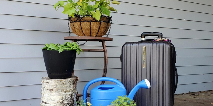 plants on porch with suitcase and watering