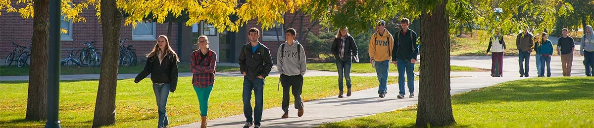 Students walk across the green