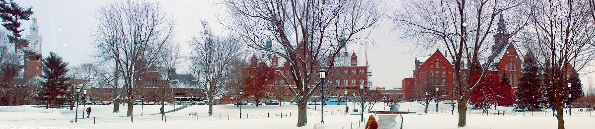 view from waterman of uvm green in winter