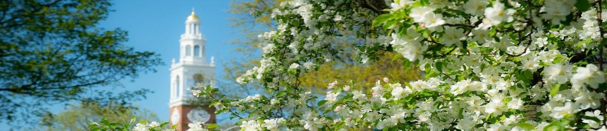 Ira Allen in the spring