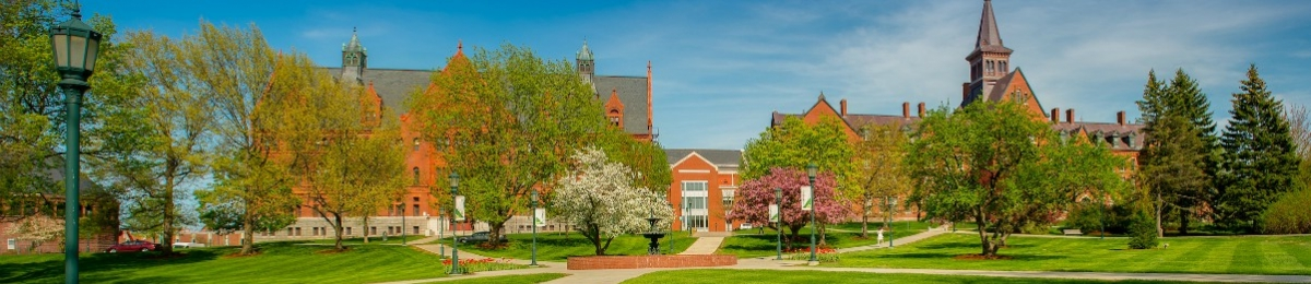 Looking across the UVM green in spring towards Williams & Lafayette