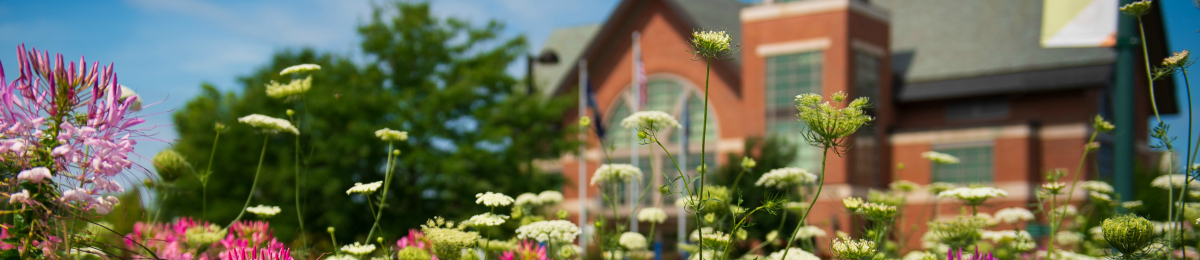 Flowers with the Davis Center in the backdrop
