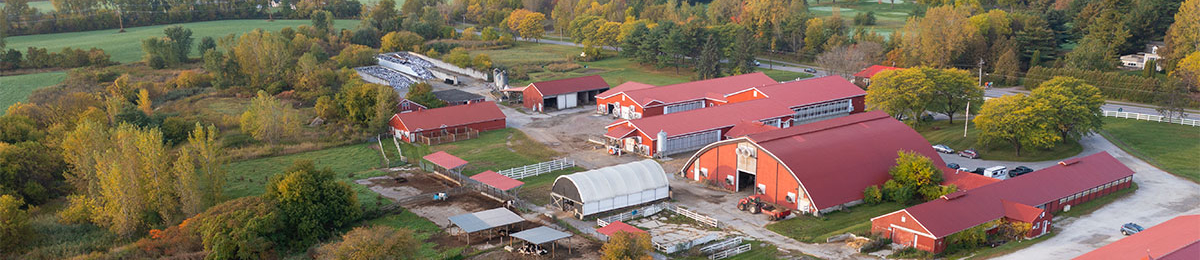 An aerial view of the UVM dairy and horse barns.