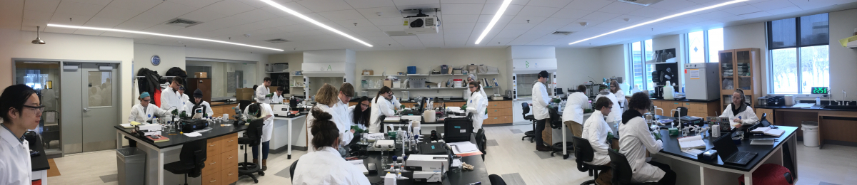 Students measure common water quality parameters in the Environmental Engineering Lab for the CE 254 Environmental Quantitative Analysis course.