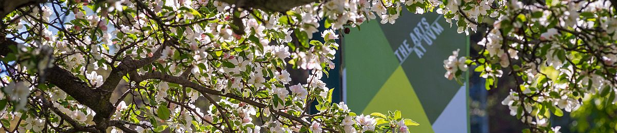waterman building peeking through blooming trees with an arts at uvm banner hanging prominently