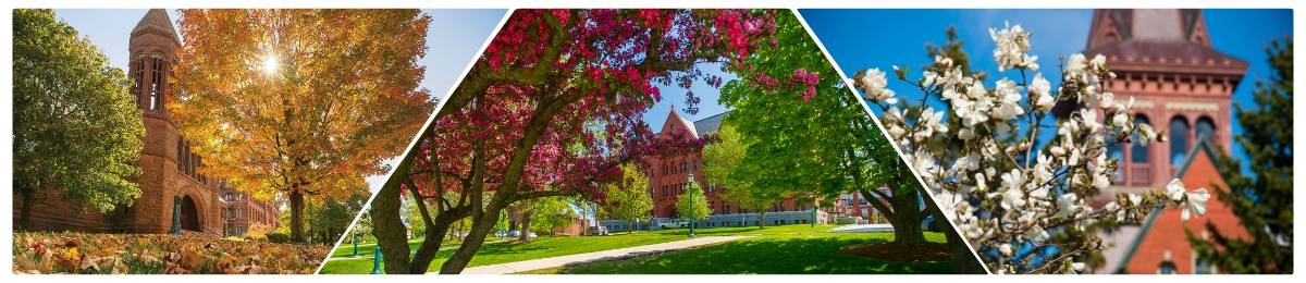 College of the beautiful UVM Campus including Billings Library, Williams Science Hall, and Old Mill tower.