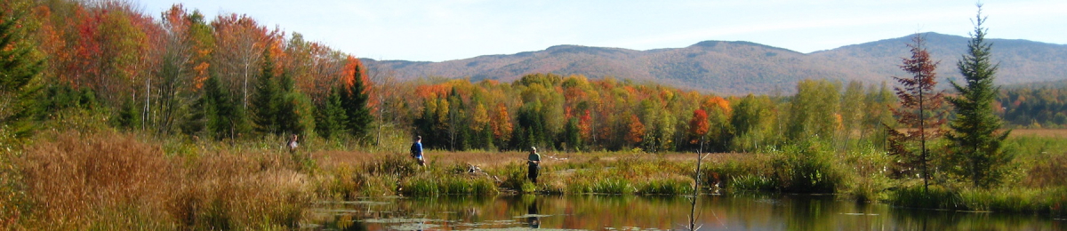 students at a pond edge in autumn with trees and mountains in the background
