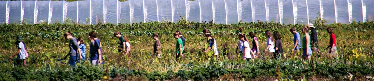 students walking in field